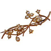 SALE Valentines Special ! Exquisite 18K Victorian Floral Seed Pearls Brooch Pin - Antique, cir