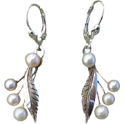 Lovely Japanese Akoya Cultured Pearls CONVERTED to Lever Backs Sterling Earrings, c. 1950's !