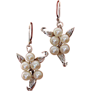 SALE Lovely Japanese Akoya Pearls CONVERTED to Lever Backs Sterling Earrings--Look like Angels