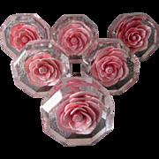 SOLD 6 Vintage Pink Roses Lucite Handles, Drawer Pulls