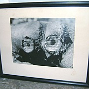 SOLD Vintage Lotte Jacobi Signed Photograph ca. 1940