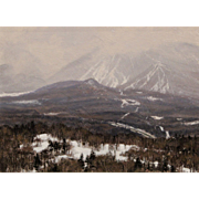 Joseph McGurl Plein Air Oil Painting - Snow Squall at Cannon Mountain NH