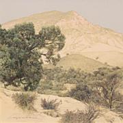 Erick Ingraham Gouache Landscape Painting - Jumbo Mountain In Summer, Paonia, CO