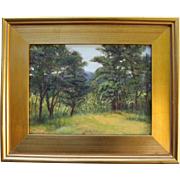 Summer In Wellfleet, MA-Impressionistic Oil Painting-Framed 9 X 12 Landscape