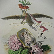 SALE Original Grandville Signed French Engraving 'Hortensia Couronne Imperiale' 1867 for Les F