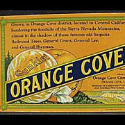 Vintage, Sunkist Advertising Ink Blotter - Orange Cove Fruits