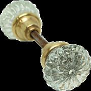 Glass daisy dot knob set with brass shank