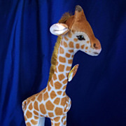SALE Steiff Giraffe 1950's with ear and chest buttons