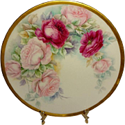 Stellar - Willets Belleek - Plate - Hand Painted - Romantic Rose Garland - Coin Gold Border -