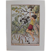 Tree Fairy   Print by Cicely Mary Baker circa 1940