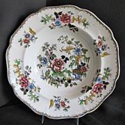 Zachariah Boyle Soup Plate,  Indian Plants, Antique English  c 1825