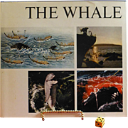 "SALE "" The Whale "", 1968 Interntionally Acclaimed, Sweden, The Definitive Book on Wh"