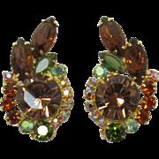 D & E Juliana Colorado and Smoky Topaz Rhinestone Earrings