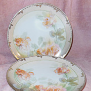 """R. S. Germany Pink Roses 8"""" Plates Set of 6"""