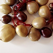 SALE Vintage Celluloid and Nuts Necklace