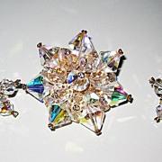 SALE Beautiful Rainbow Crystal Brooch and Earrings