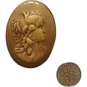 SALE NICE PRICE!  Celluloid Cameo Brooch:  Lady Face Figural