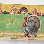 REDUCED Vintage 1908 Thanksgiving Greeting Postcard 3 Children Watching Turkey Behind Fence