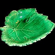 Wedgwood - Majolica - Leaf Trinket Dish
