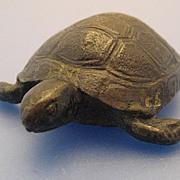 Bronze Tortoise in Miniature - Victorian/Edwardian