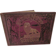 SOLD 1876 Natural History ScrapBook, Illustrated, Religious Tract Society, London England