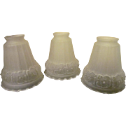 3 Frosted Glass Light Shades, Dogwood Flowers