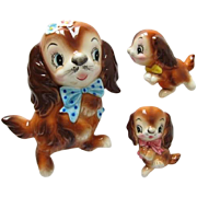 Super Cute Vintage PY Cocker Spaniel Wall Plaques