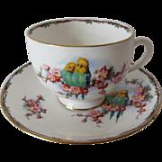 SOLD Royal Albert Crown China Parakeet Tea Cup and Saucer
