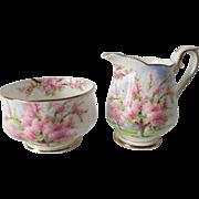 Early Royal Albert Blossom Time Cream & Sugar