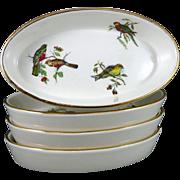 Set of 4 Vintage Pillivuyt Porcelain Oval Bakers with Birds from France