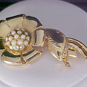 SALE Simulated Pearls & Tiny Auroras Set in Beveled Gold Pate Rose~ Brooch