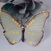 SALE Blue & Cream Enamel - All Metal Butterfly Brooch/Pin