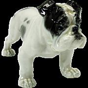 Vintage Rosenthal porcelain Bulldog puppy figure