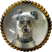 SALE PENDING Large Victorian GREYHOUND dog crystal brooch pin