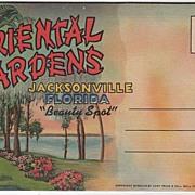 Souvenir Folder Oriental Gardens Jacksonville Florida