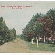 Road Leading from Geneva to Lake Erie Geneva Ohio OH Postcard