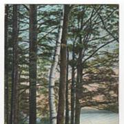 Brookside Park Athol/Orange MA Massachusetts Vintage Postcard