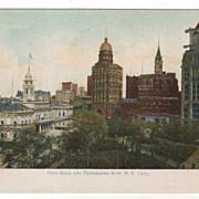 SOLD City Hall and Newspaper Row New York City NY New York Postcard