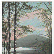 Camden ME Maine Hosmer's Point and Bald Mountain Vintage Postcard