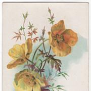 Greetings Vintage Postcard Birthday Beautiful Yellow Flowers Tuck