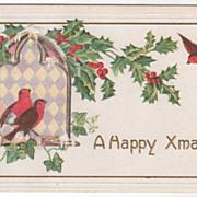 Christmas Vintage Postcard A Happy Xmas Redbirds Ivy Holly