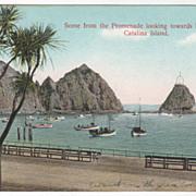 Promenade Looking to Sugar Loaf Catalina Island CA California Vintage Postcard
