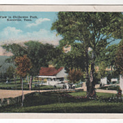 View in Chilhowee Park Knoxville TN Tennessee Vintage Postcard