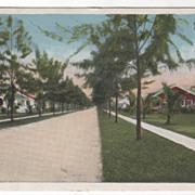 Sunset Avenue Palm Beach FL Florida Vintage Postcard