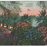 Among the Flowers Westlake Park Los Angeles CA California Vintage Postcard
