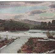 Truckee River NV Nevada Vintage Postcard