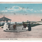 Scene at Salem Willows Salem MA Massachusetts Vintage Postcard