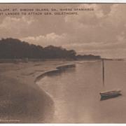 Gascoigne Bluff St Simons Island GA Georgia Vintage Postcard