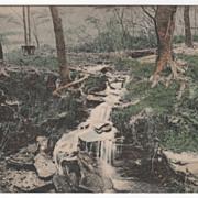 The Springs White Sulphur Spring NY New York Vintage Postcard