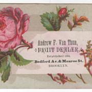 Andrew F Van Thun Fruit Dealer Bedford Ave Monroe St Brooklyn Victorian Trade Cd